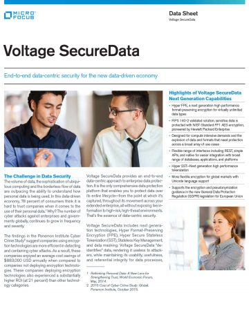 Voltage SecureData Data Sheet