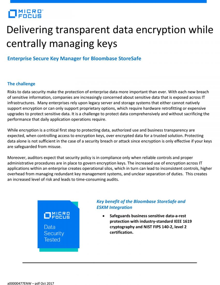 Delivering transparent data encryption while centrally managing keys